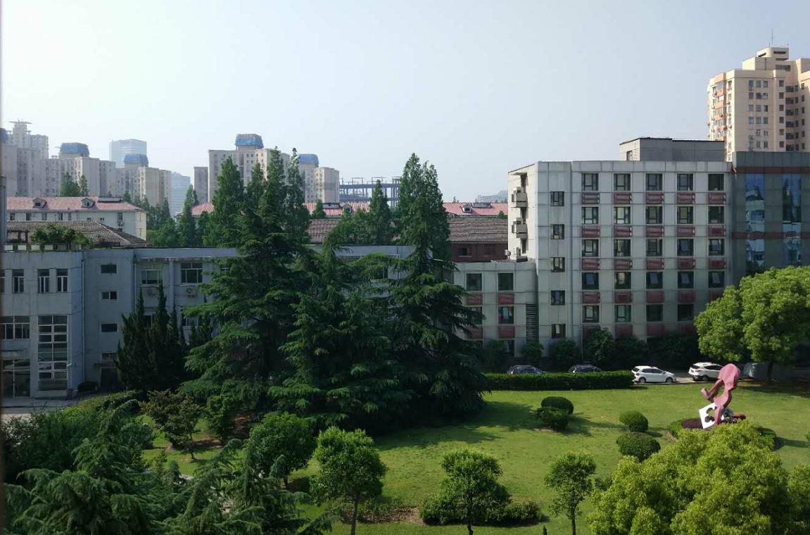 中国教育报  杨向东:学科核心素养——基于国情的理论创新